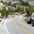 Curves in Yosemite — Stock Photo