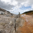 Stock Photo: Way between geysers