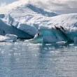 Jokulsarlon lake — Stock Photo #32393583
