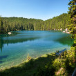 Panoramic Carezza lake — Stock Photo