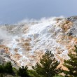 Mammoth Hot Springs — Stock Photo
