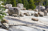 Stones on the rocks in Yosemite — Stock Photo