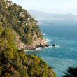 Coast in Liguria — Stock Photo