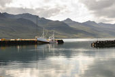 Port in Iceland — Stock Photo
