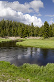 River in Yellowstone — Stock Photo