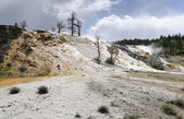 Overview of Mammoth Hot Springs — Stock Photo