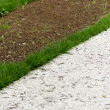 Road and grass — Stock Photo