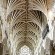 Exeter Cathedral — Stock Photo