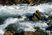 Rapids in the river in Iceland — Stock Photo