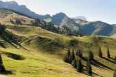 Pastures in Switzerland — Stock Photo