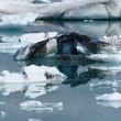 Jokulsarlon lake — Foto Stock