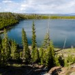 Yellowstone Lake — Stock Photo #33051207