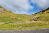Meadows in Iceland — Foto Stock