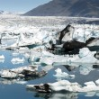 Jokulsarlon lake — Stock Photo #35245037