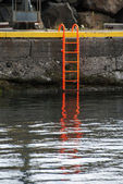 Orange ladder — Stock Photo