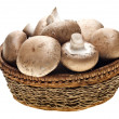 Portabello Mushrooms — Stock Photo #35450301