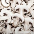 Mushroom Backdrop — Stock Photo
