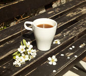 Coffee on the bench — Foto Stock