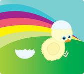 Poulet nouveau-né — Vecteur