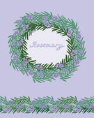 Rosemary decorative frame — Stock Vector