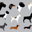 Set of dogs — Stock Vector