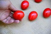 Pisanki tradycyjne czerwone i ozdoba — Zdjęcie stockowe