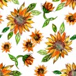 Pattern with Sunflowers — Stock Photo