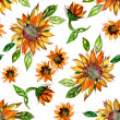 Pattern with Sunflowers — Stock Photo #31763785