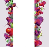 Red beet banner — Stock Photo