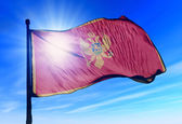 Montenegro flag waving on the wind — Stock Photo