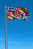 Bourgogne (France) flag waving on the wind — Stock Photo