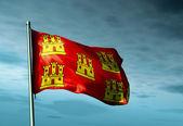 Poitou-Charentes (France) flag waving on the wind — Stock Photo