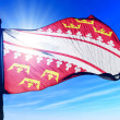 Alsace (France) flag waving on the wind — Stock Photo #41882535