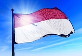 Flag of Monaco, Indonesia, Hesse (GER)  — Stock Photo