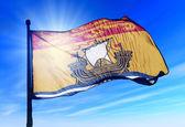 Flag of New Brunswick (Canada)  — Stock Photo
