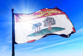 Prince Edward Island (Canada) flag waving on the wind — Stock Photo