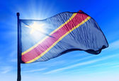 Democratic Republic of the Congo flag waving on the wind — Stock Photo