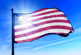 Liberia flag waving on the wind — Stock Photo