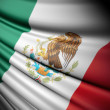 Flag of Mexico — Stock Photo #43529077