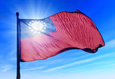 Myanmar flag waving on the wind — Stockfoto