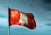 Hamburg (GER) flag waving on the wind — Stock Photo