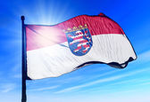 Hesse (GER) flag waving on the wind — Stock Photo