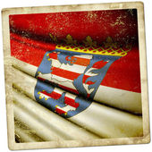 Hesse (GER) flag waving on the wind — Stockfoto