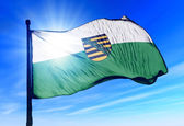 Saxony (GER) flag waving on the wind — Stock Photo