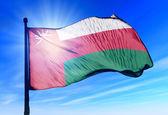 Oman flag waving on the wind — Stock Photo