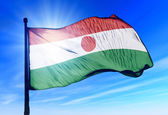 Niger flag waving on the wind — Stock Photo
