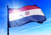 Paraguay flag waving on the wind — Stock Photo