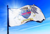 Saint Barthelemy flag waving on the wind — Stock Photo