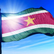 Suriname flag waving on the wind — Stock Photo #44299209