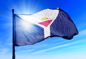 Saint Martin flag waving on the wind — Stock Photo